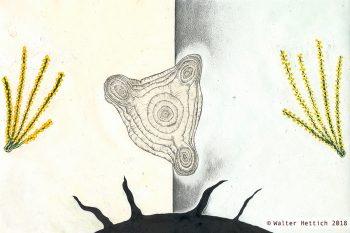 Batman und seine Taschenlampe - Phosphoreszierendes Erleben des Raumes durch Neutrinos und Quarks